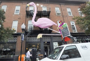 pink flamingo at cafe hon