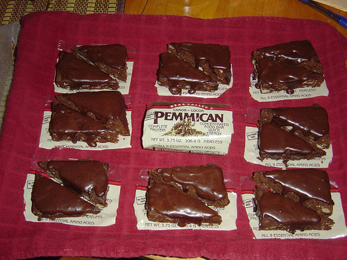 Pemmican cake recipe multi cultural cooking network pemmican forumfinder Images