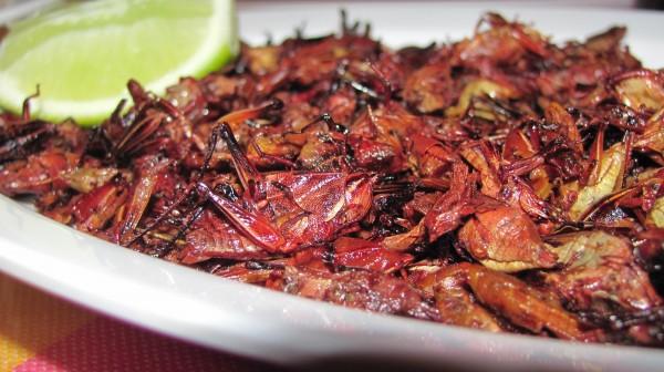 Oaxacan Mexican Food Los Angeles