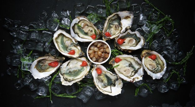 oysters-1209767_1280